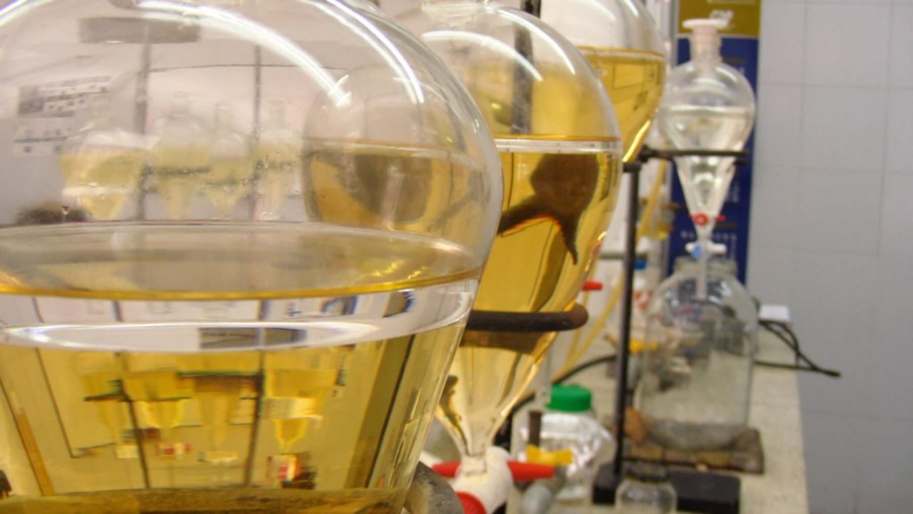 6 laboratorio